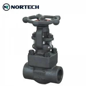 800lbs gate valve (1)