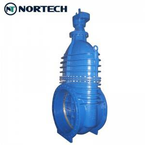 BS5163 gate valve (2)