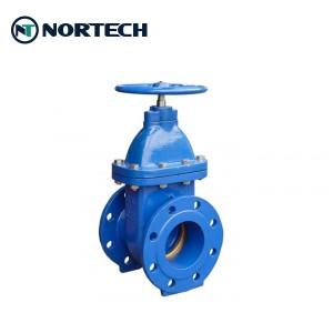 BS5163 gate valve (3)