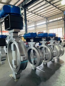 Double eccentric butterfly valve (2)