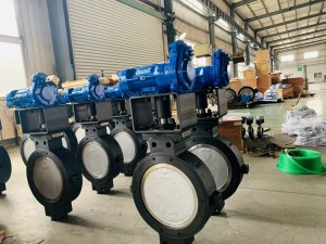 Double eccentric butterfly valve (3)