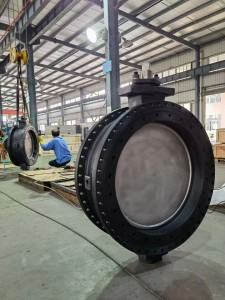 Double eccentric butterfly valve (5)