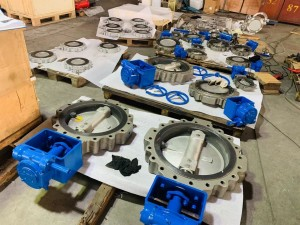 Double eccentric butterfly valve (6)