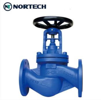 globe valve1